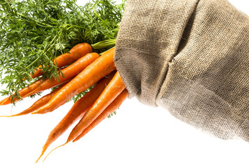 fresh carrot in a cask isolated on white background