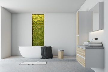 White bathroom, green wall