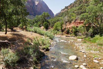 The Virgin River gently tumbles over rocks as it winds its way through Zion Canyon