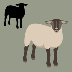 sheep young flat style vector illustration profile view silhouette