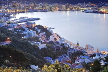 New Zealand Wellington Twilight Over CBD
