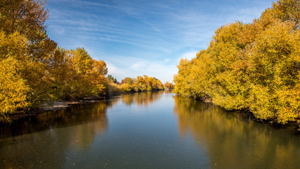 Wall Murals River Fall trees line a river in Boise Idaho with blue sky
