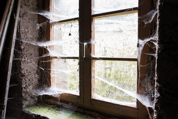 old house from inside with cobwebs