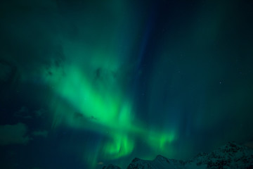 Northern lights (Aurora borealis). Norway, Lofoten