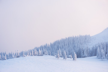 Christmas landscape in the winter mountains at sunset
