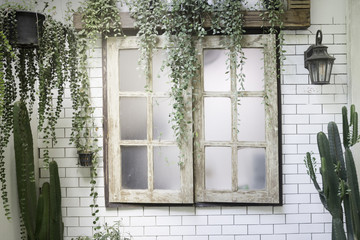 Green view indoor home garden