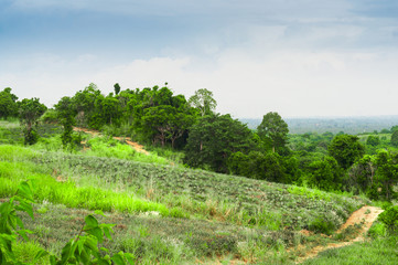 Green Scenic Hill with ground road. Wild landscape view in Thailand