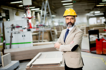 Middle-aged businessman in factory