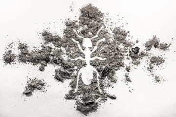 Ant or termite silhouette drawing made in ash