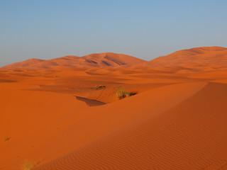 Sahara dunes in Merzouga, Africa