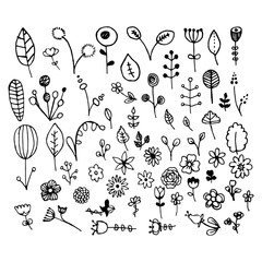 A set of hand-drawn plants. Doodle plants in retro style. Illustration