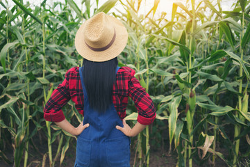 Happy farmer in the corn field