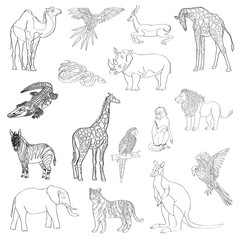 Vector illustration. Set of animals, parrot, giraffe, monkey, gazelle, elephant, rhinoceros, kangaroo, camel, lion, zebra, crocodile, snake, tiger. Black line.