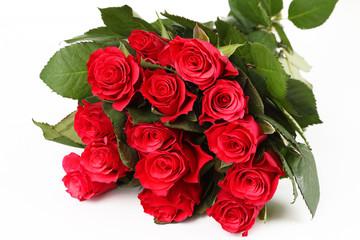 Poster Struisvogel rote Rosen