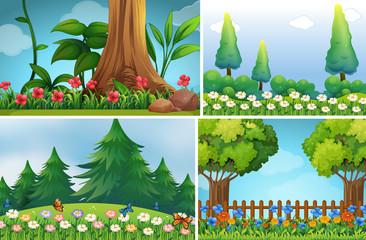 Four background scenes of garden