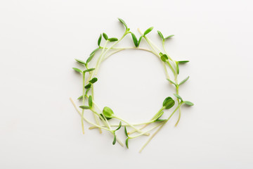 Arugula micro greens isolated at white background