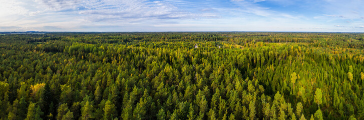 Papiers peints Forets Aerial view of autumn trees. Colorful trees from above. Panorama.