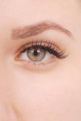 Beautiful woman eye with long eyelashes.  Studio shot