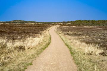 Wanderweg im Nationalpark Thy an der dänischen Nordseeküste