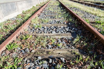 rusty rails with wooden sleepers and encroaching vegetation