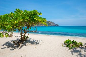 Mawun beach - Lombok, Indonesia.