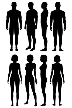 human body anatomy, front, back, side view, vector woman and man illustration
