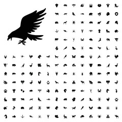 Eagle icon illustration. animals icon set for web and mobile.