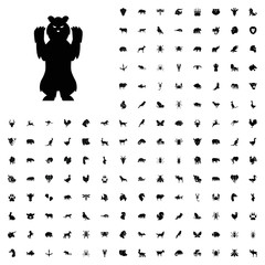 Bear icon illustration. animals icon set for web and mobile.