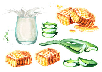 Aloe Vera, honey and glass of milk. Watercolor hand drawn set