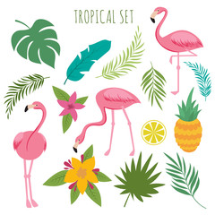 Tropical vectoro set with pink flamingos, palm leaves and flowers