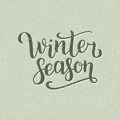 Winter season hand written inscription with isolated on green background with snowflakes. Vector illustration. Lettering. Postcard for winter season advertising.