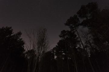 Dark sky in North Carolina