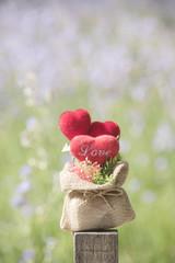 Head in love in valentine Natural