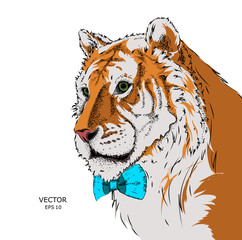 Portrait of a tiger with tie. Can be used for printing on T-shirts, flyers and stuff. Vector illustration