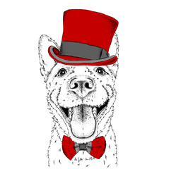A smiling dog  in old hat. Vector illustration