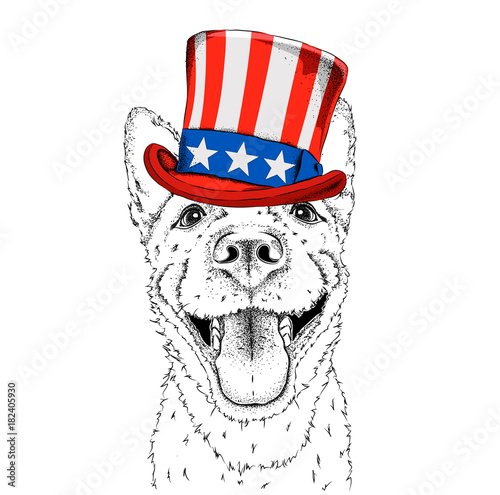 A Smiling Dog In Old American Hat With A Flag National Symbols Of
