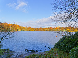 On a muddy bank, lookiong out over the rippled water of a large lake towards trees in autumnal colours