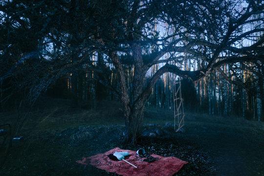 Fantasy landscape with horror mood