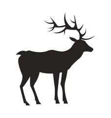 Medium-Sized Adult Male Deer Colorless Black Icon