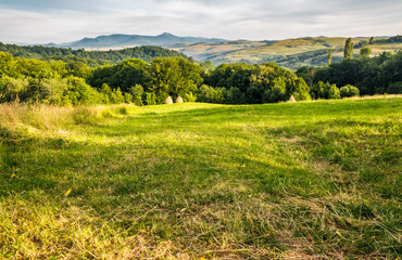 grassy rural field in mountains. haystack a the end of meadow near the forest. mountain ridge with high peak in the far distance. lovely countryside in Carpathians