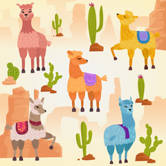 Vector Illustration set of cute vector alpaca lama and cactus with stones and rocks.