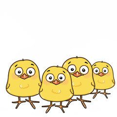 cute yellow chicks