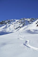 Tracks in powder snow, Kroendlhorn, Kitzbuehel Alps, Tyrol, Austria