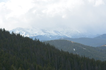 Forested area below snowy peaks