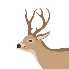 deer  vector illustration  profile side flat style