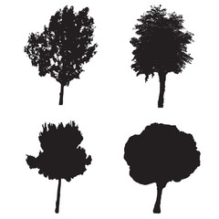 four silhouette trees vector set - white background