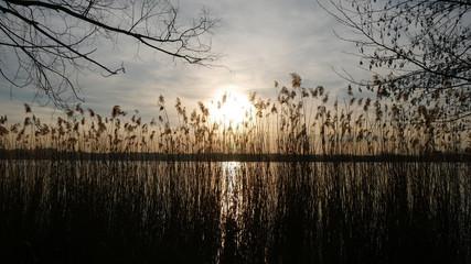 Caldo tramonto sul lago dorato