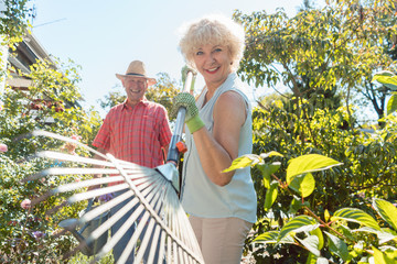 Low-angle view funny portrait of a cheerful senior woman holding a leaf rake during work in the garden with her happy husband