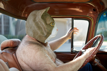 Shirtless man wearing weird cat mask while driving