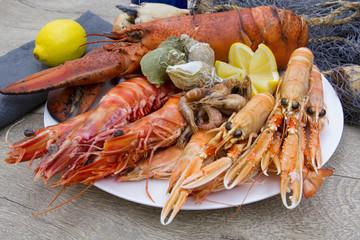 Photo sur Plexiglas Coquillage plateau de fruits de mer